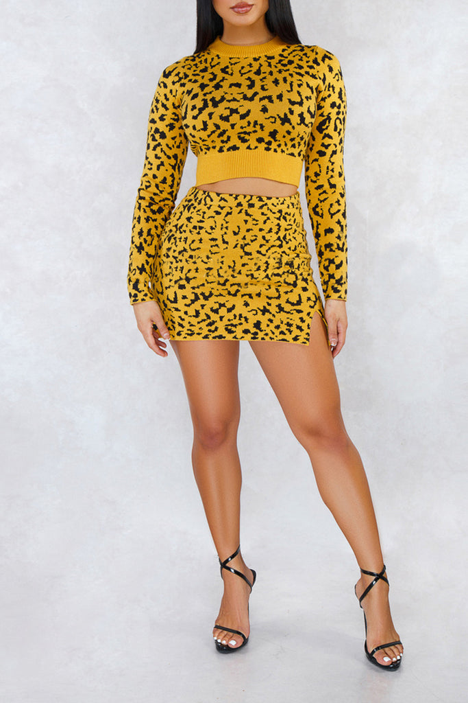 Knitted Leopard Print High Waist Two Piece Dresses