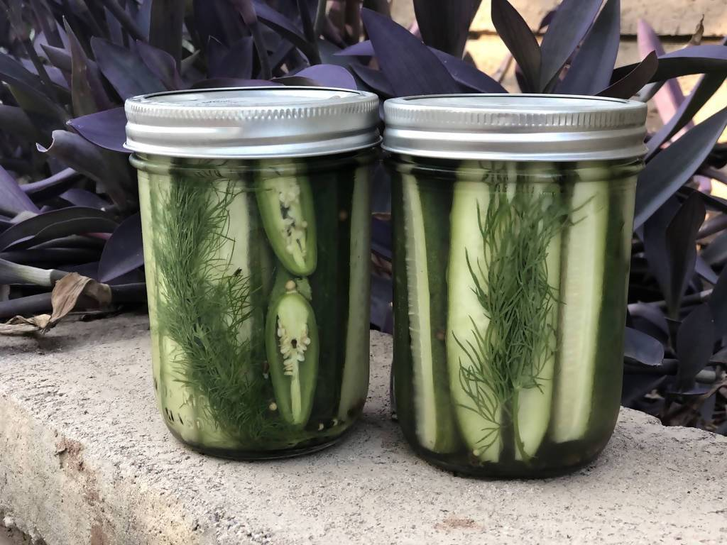 16oz. Spicy Garlic Dill Refrigerator Pickles Pickles Heartquist Hollow Family Farm 16 oz. Jar Spicy Garlic Dill Refrigerator Pickles