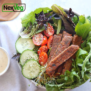 2 Pack 4 oz. NexVeg Tepary Bean Smoky Southwest Patties Plant based protein NexVeg