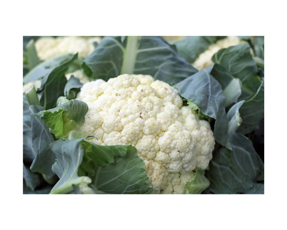 Cauliflower Vegetables Crooked Sky Farms