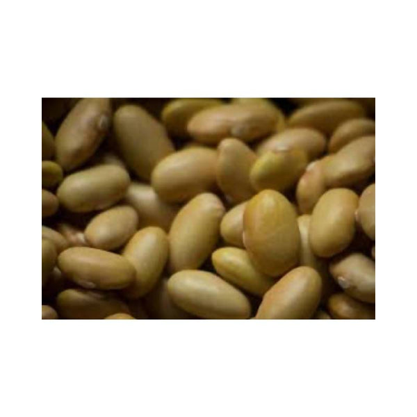 Mayocoba Beans Dry Beans Crooked Sky Farms