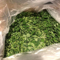 Organic Pea or Sunflower Shoots Microgreens Rhiba Farms