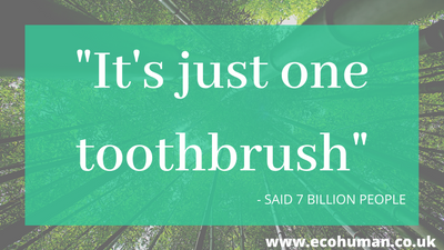 Why Make the Switch to a Bamboo Toothbrush?