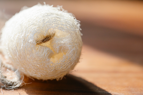 natural loofah on wooden surface