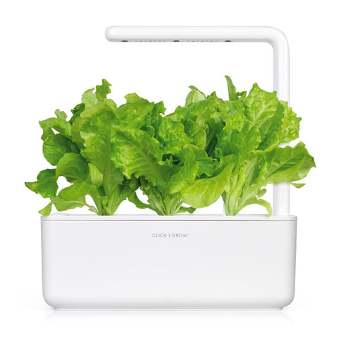 Click & Grow Green Lettuce Plant Pods (3-pack)