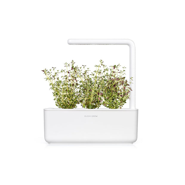 Click & Grow Thyme Plant Pods