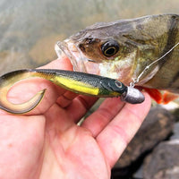 Fish Arrow Flash J Grub 4.5 inch SW Series