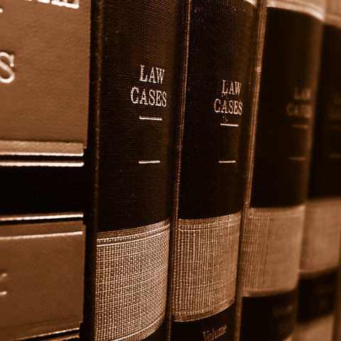 Introduction to Evidence Law
