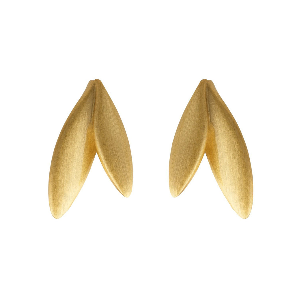 Olive earrings - gold