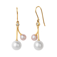 Load image into Gallery viewer, Fine Coco earrings - solid gold