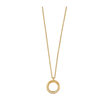 Load image into Gallery viewer, Swan necklace - gold