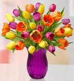 Assorted Tulips Fresh Flower Double Bouquet with Purple Vase (30 Tulips)