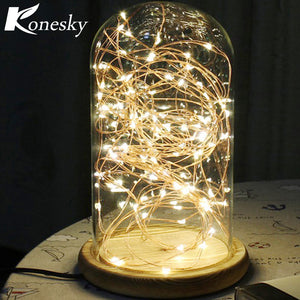 5m 50 LED Copper Wire String Light with Bottle Stopper