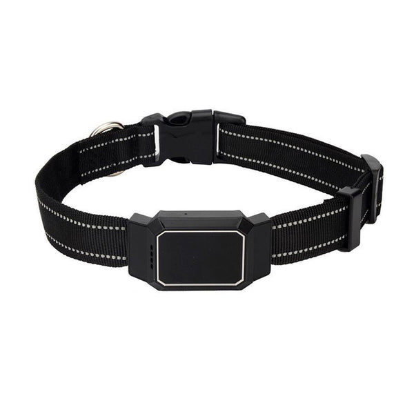GPS Dog Collar/Pet Collar