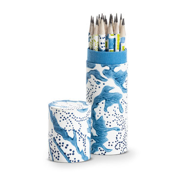 Printed Paper Pencil Tube