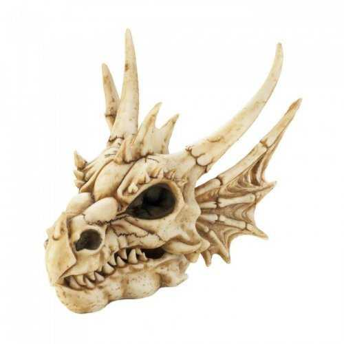 Dragon Skull Box (pack of 1 EA)