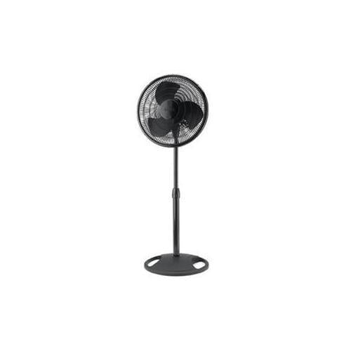 "16"" Oscillating Stand Fan Blk"