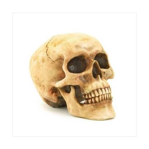 Grinning Skull Figurine (pack of 1 EA)