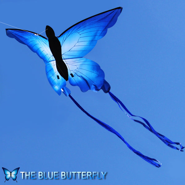 3D Girl rainbow animal volant sport single kite flying line kid Papillon Blue Weifang Blue butterfly beautiful fun factory jouet
