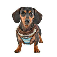 Crayon Vest Style Dog Harness By Puppia - Brown