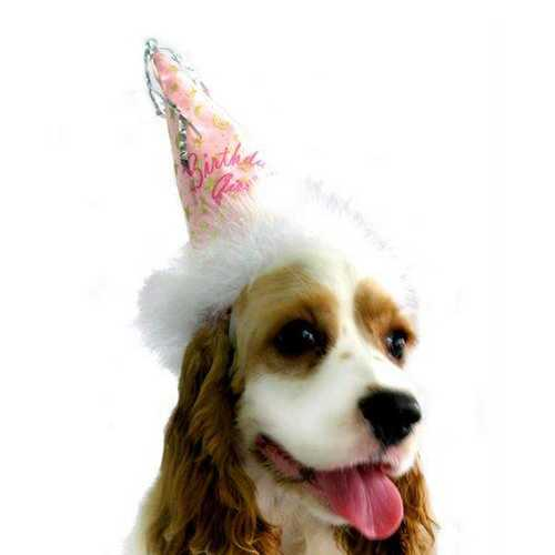 Birthday Girl Party Hat
