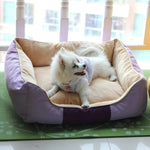 Comfortable Kennel Pet Dogs House Washable Luxury Bed Dog Small Pet Cat Large Dog Bedding Casinha De Cachorro Pet Supply 60Z1545