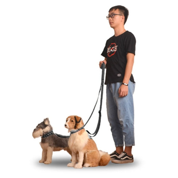 Multifunctional Nylon Pets Dog Harnesses Lead Set Traction Rope Strong Leash Dog Collar Pets Training Supplies