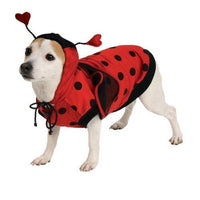 PET LADYBUG COSTUME MEDIUM