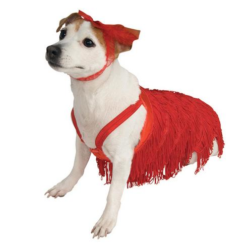 PET COSTUME FLAPPER LARGE