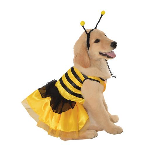 PET COSTUME BABY BUMBLEBEE MD