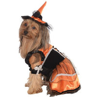 PET COSTUME ORANGE WITCH LG