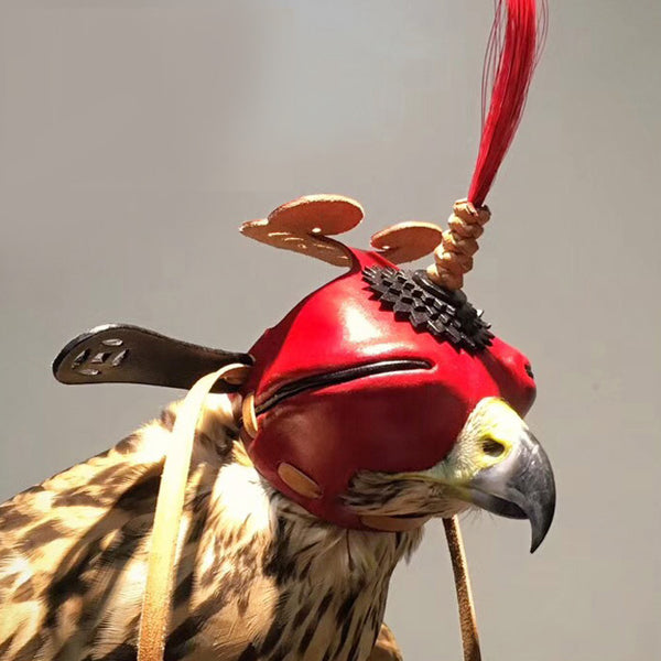 Traditional Shantou Headgear Eye Patch Eyeshade Blinkers Falconry Tactical Hunting Falco Hawk Black Eared Kite Winged Hat