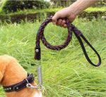 Super High Quality Dog Cat Leash Collar Set Spring Cow Leather Fashion Pet Dog Collars Dog Leashes