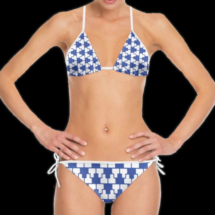 SPRUIKA royal blue-on-white 'ZipTrak' check Bikini