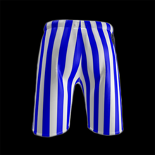 Load image into Gallery viewer, SPRUIKA 'Blue Candy' ROX Shorts