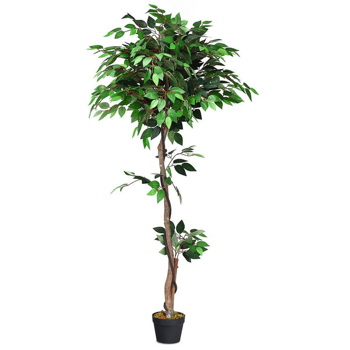 Artificial Ficus Tree | Best Indoor House Plants