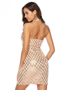Standing Collar Mesh Backless Bobycon Evening Dress