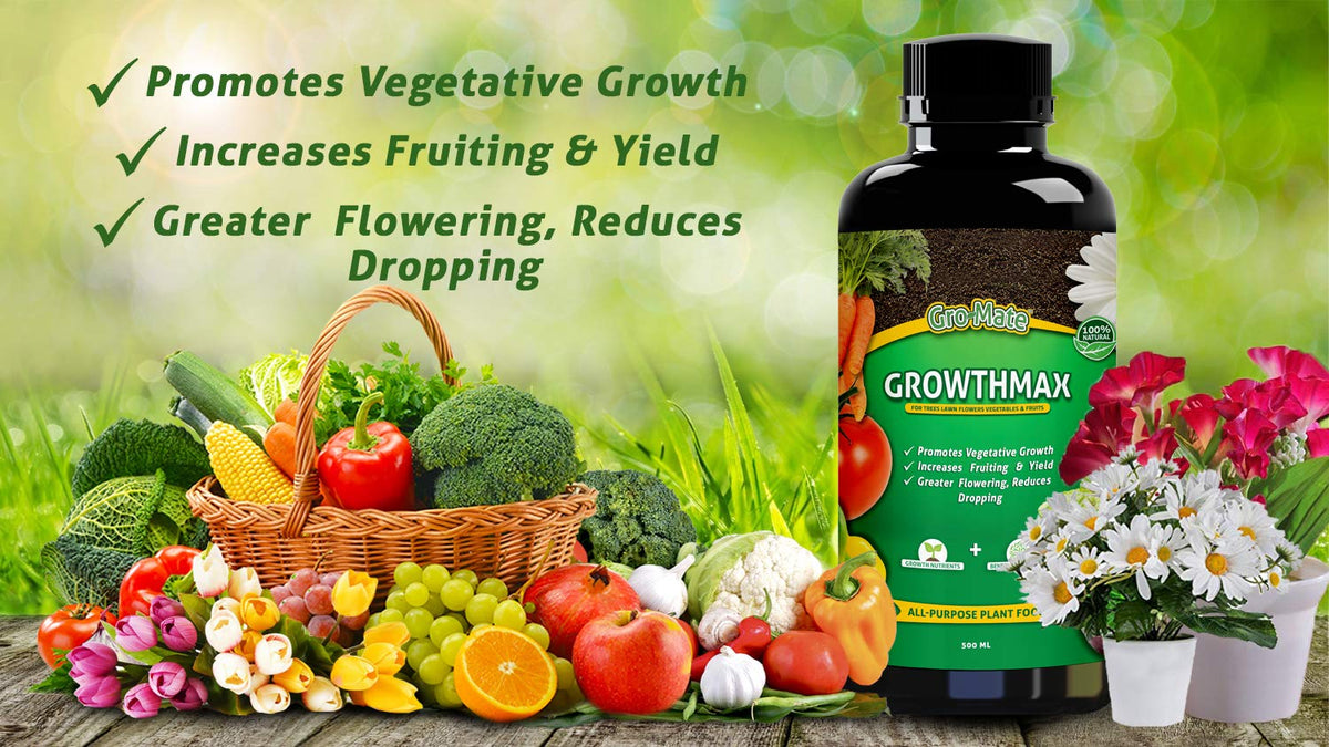 GrowthMax All-Purpose Organic Plant Food