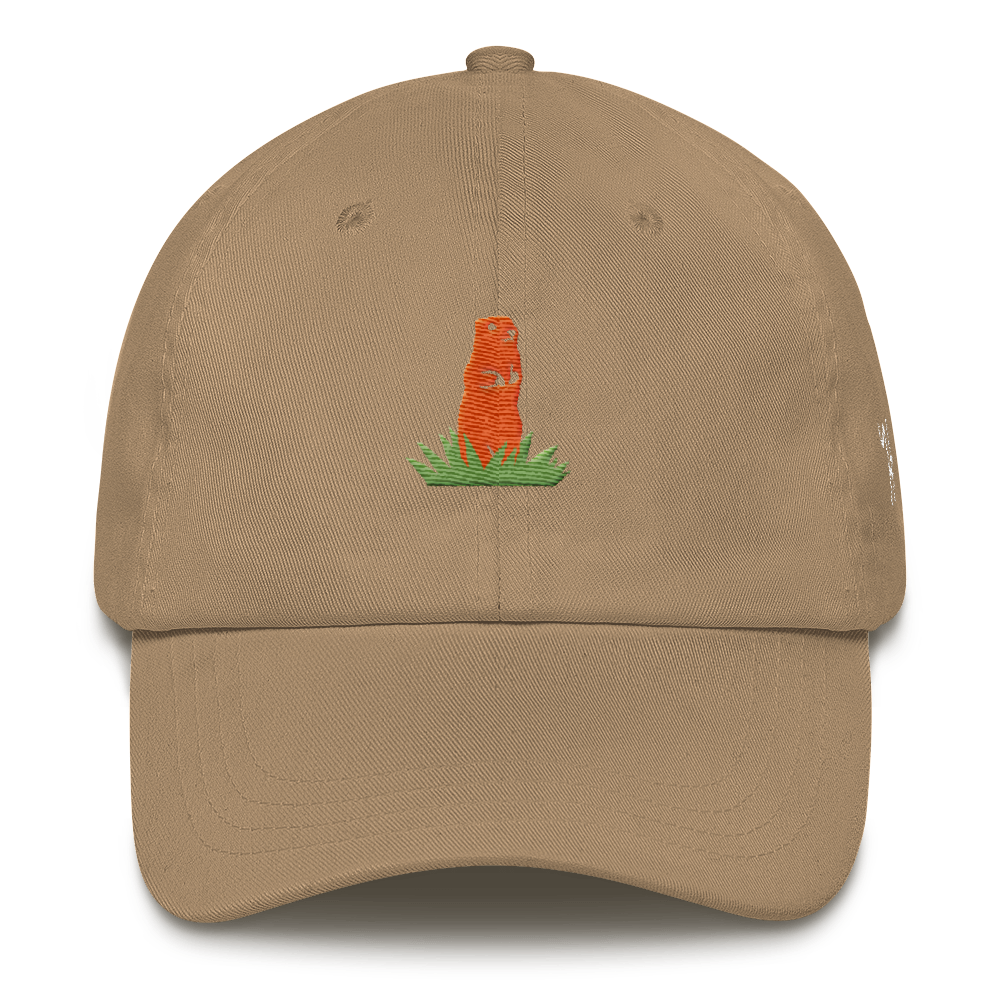 Gopher Dad hat