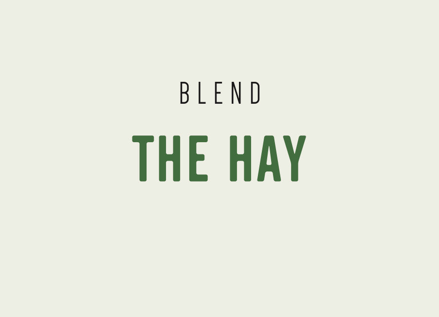 THE HAY ESPRESSO - 12 months subscription