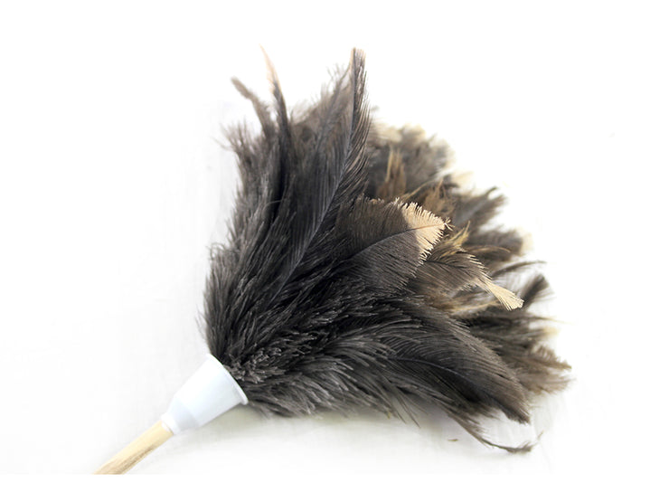 Economy Feather Duster - Ostrich Africa