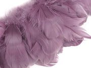 Goose Nagoire Feathers - Strung (Sold By Meter) - Goose Feathers - Ostrich.co.za