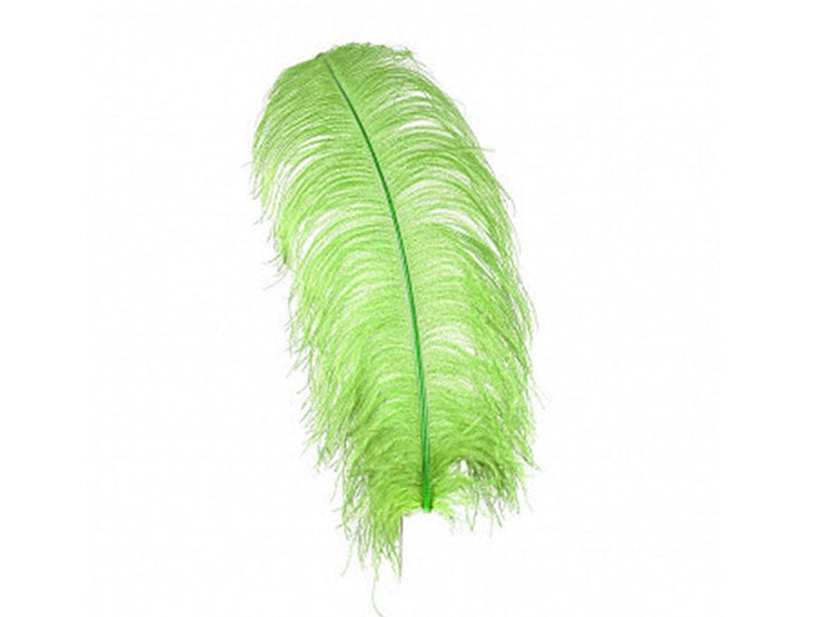Ostrich Plumes - Long - First Quality - Ostrich Feathers - Ostrich.co.za