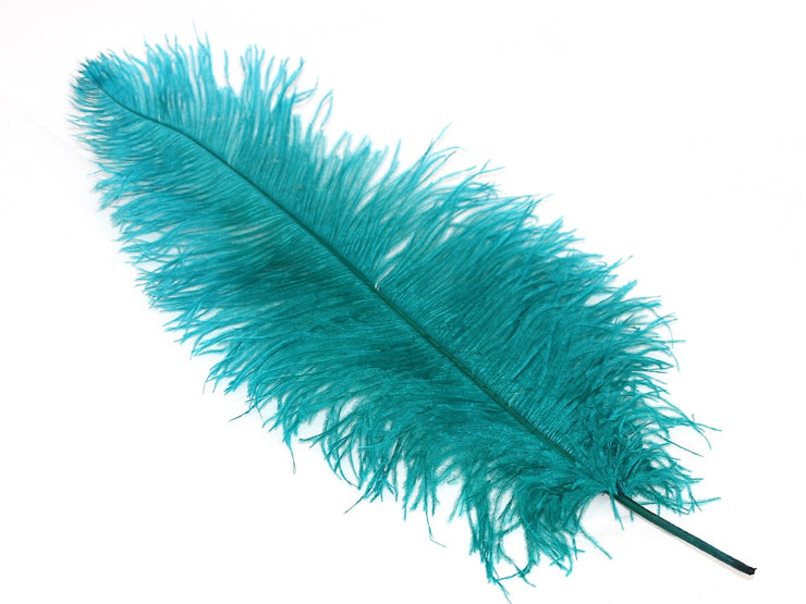 Ostrich Plumes - Long - Second Quality - Ostrich Feathers - Ostrich.co.za