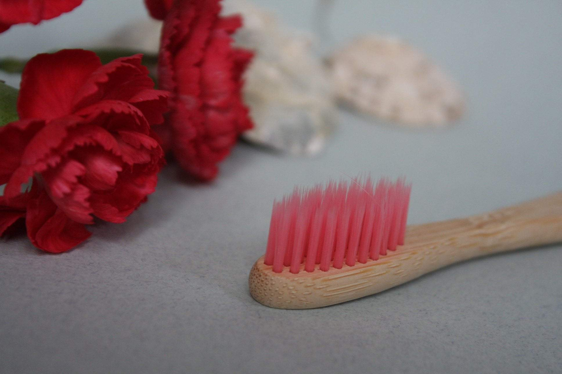 Pink Bamboo Wood Toothbrush - Pro Charcoal