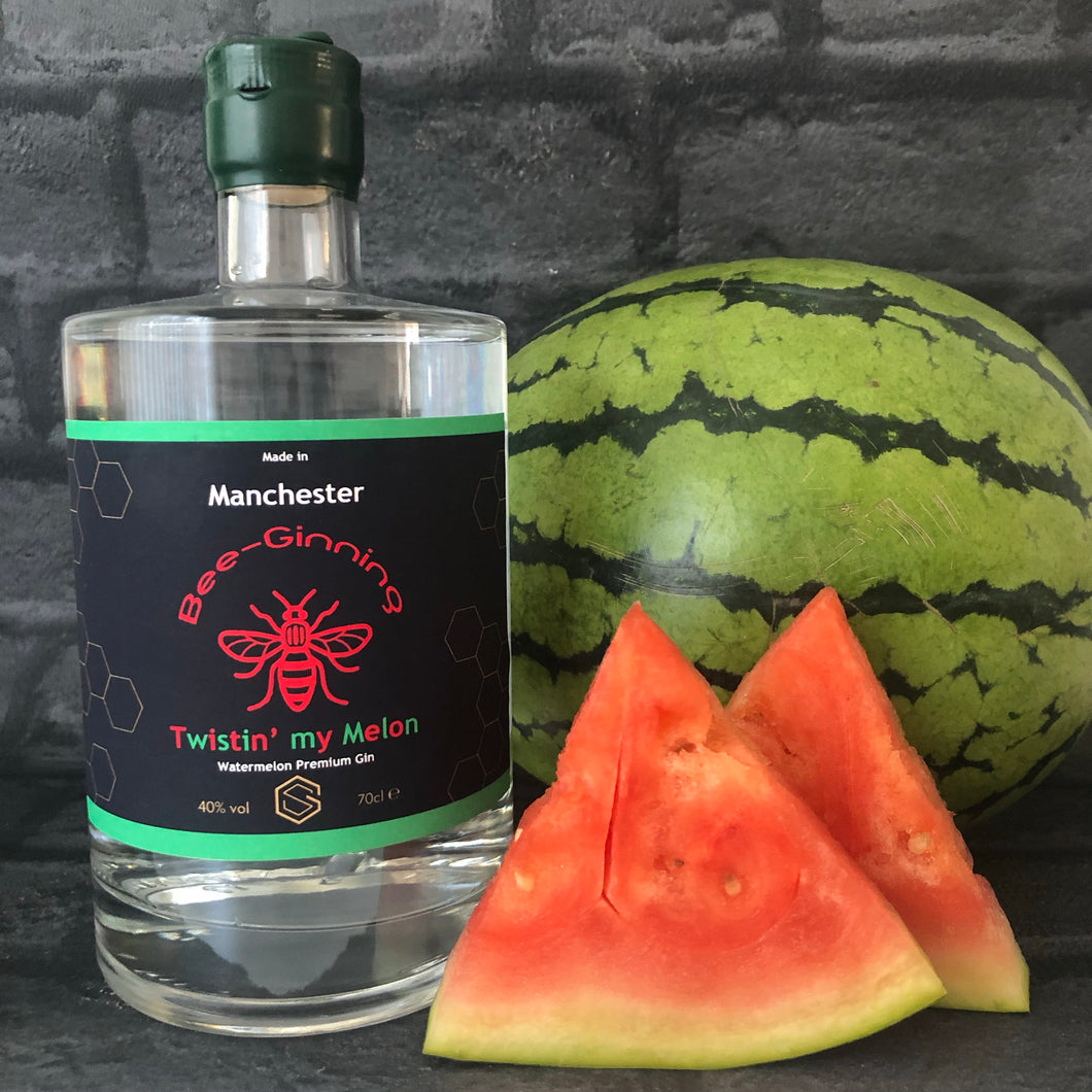 Bee-Ginning 'TWISTIN' MY MELON' Watermelon Premium Gin