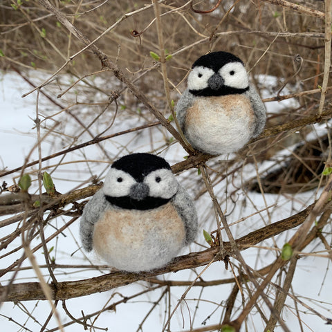 Chickadees Kit