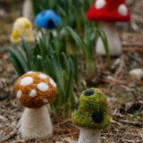 Mushrooms (a set of 3)