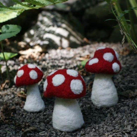 Mushroom Kit (Red) - Retiring in 2020!!
