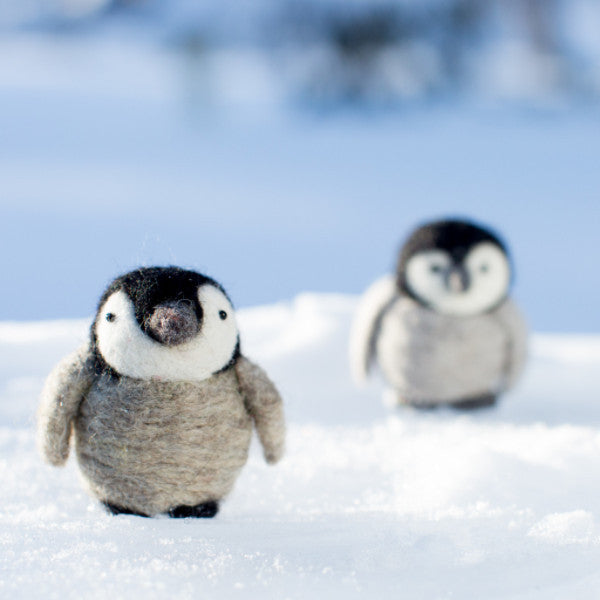 Baby Penguins Kit
